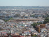 View of the Plaza de Toros from the top of the Giralda