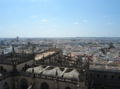 Views across Sevilla from the top of the Cathedral