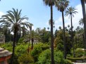 Inside the beautiful gardens of the Real Alcazar